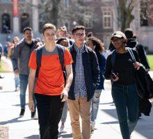 ICCAE Student Diversity